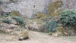 Mur chateau mousse